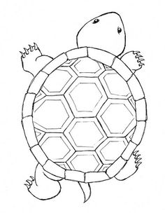 Easy Turtle Drawing At Getdrawings Com Free For Personal Use Easy