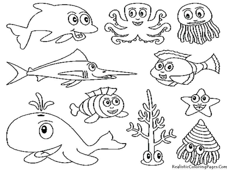 940x705 National Geographic Coloring Pages Coral Reef Ecosystem National