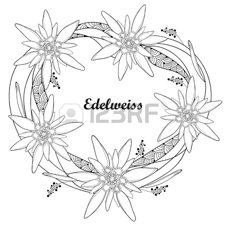 450x450 Ornate Round Wreath With Outline Edelweiss Or Leontopodium Alpinum