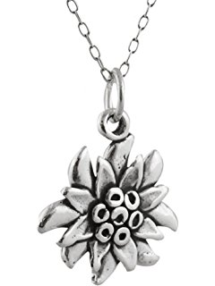 240x320 Edelweiss Pressed Real Flower Necklace Pendant Antique