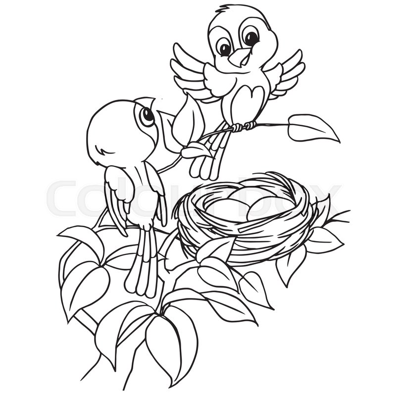 800x800 Cartoon Bird Egg In Nest Coloring Page Vector Stock Vector