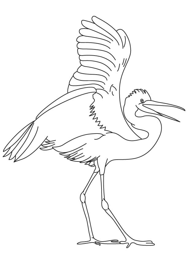 Egret Drawing at GetDrawings Free for personal use
