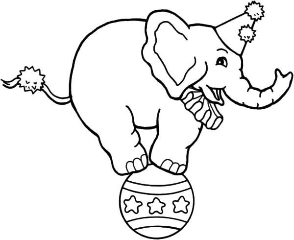 600x490 Circus Elephant Coloring Page Circus Elephant Coloring Sheet