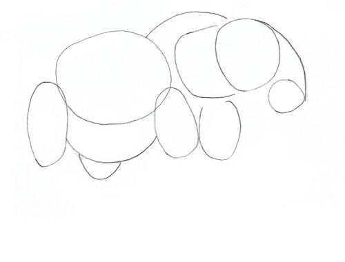500x380 How to Draw an Elephant