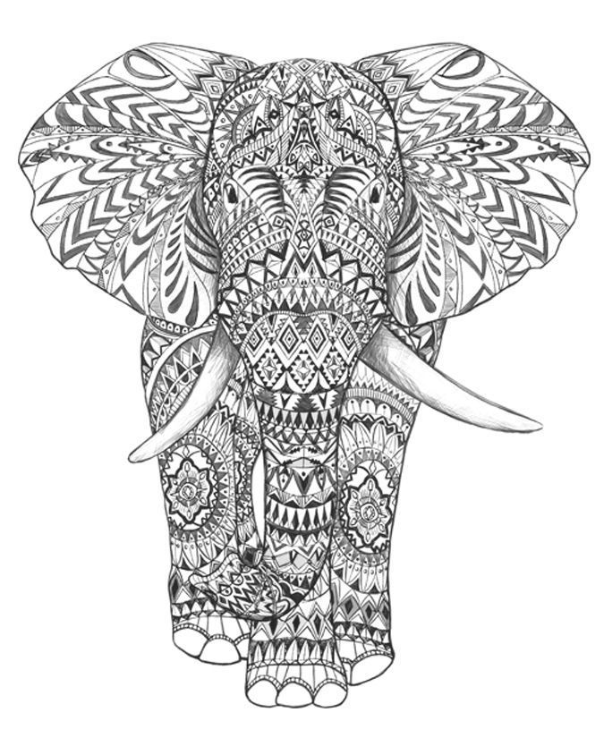 675x825 Coloring Pages For Adults Difficult Elephants