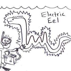 300x300 Electric Eel Outline Coloring Page Electric Eel Outline Coloring