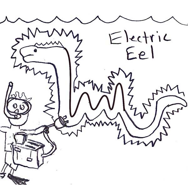 600x590 Funny Picture Of Electric Eel Coloring Page Color Luna