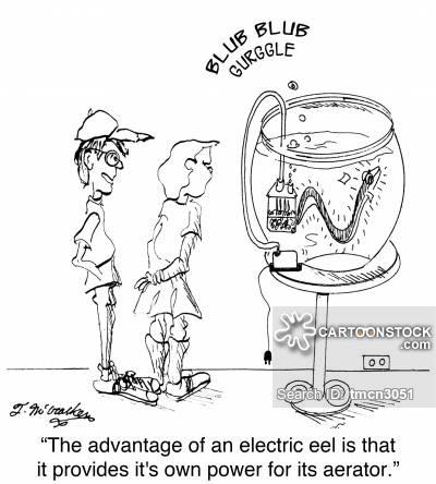 400x444 Pet Eel Cartoons And Comics