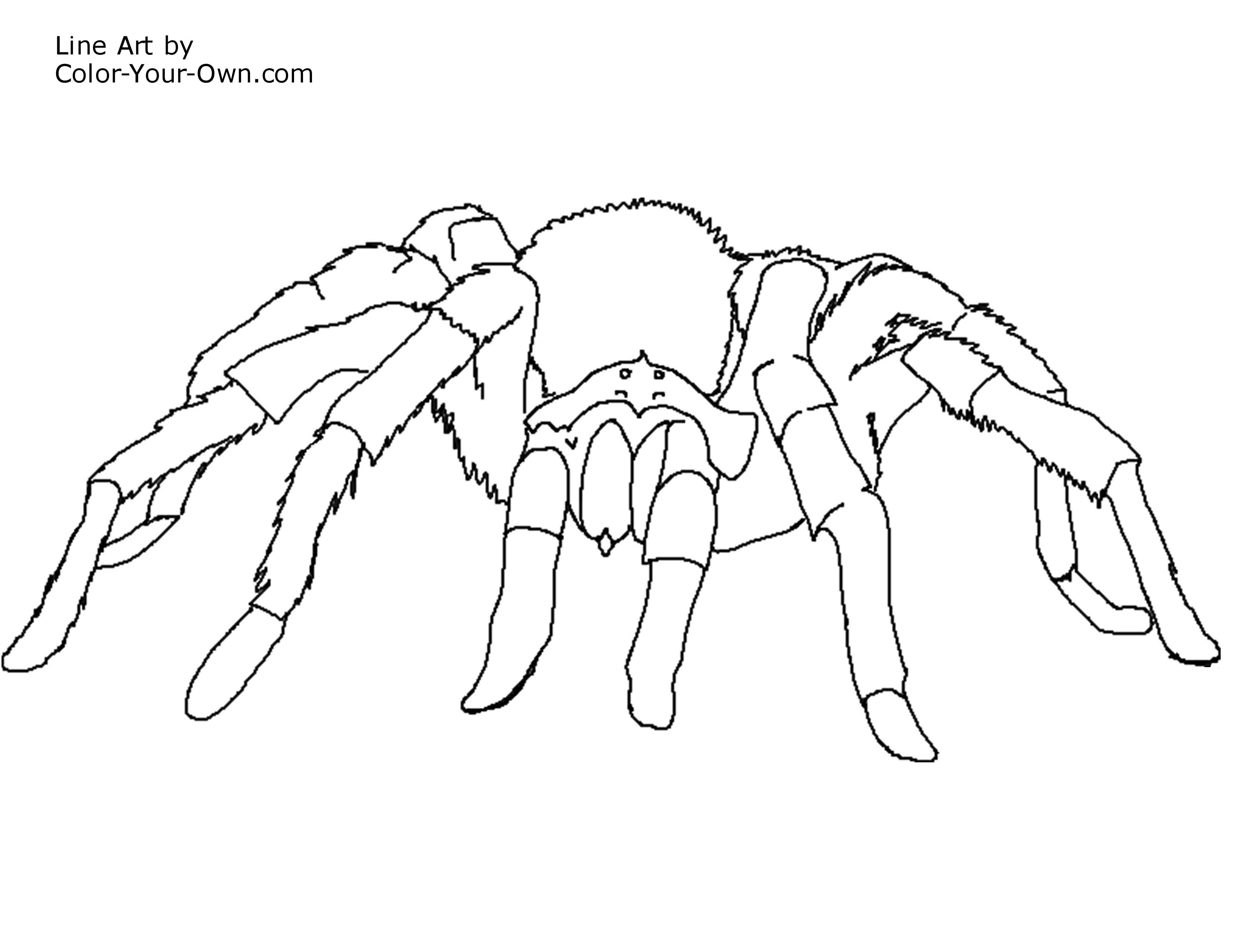 3300x2550 New Free Printable Coloring Pages