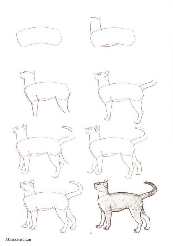 600x853 Pin By Luiz On Dilo Con Una Imagen Cat And Illustrations