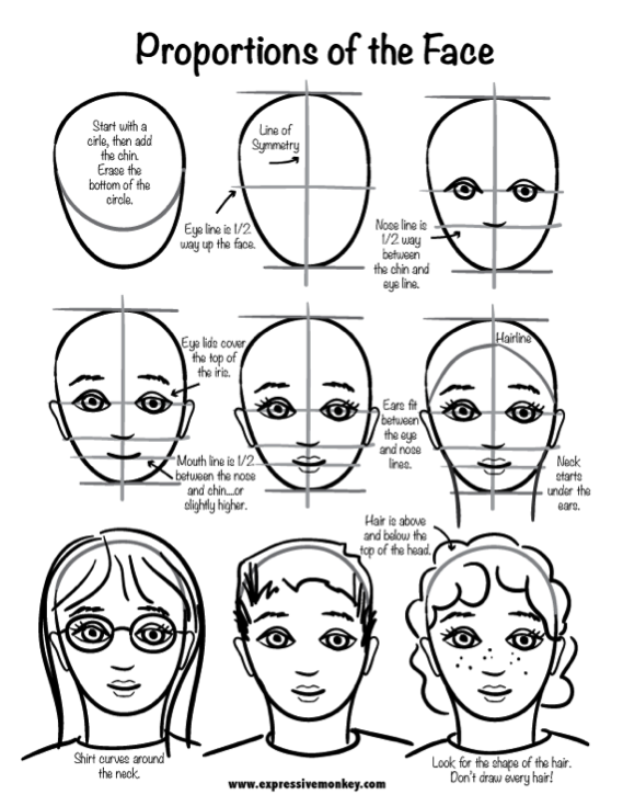 569x735 Proportion Face Drawing Elementary