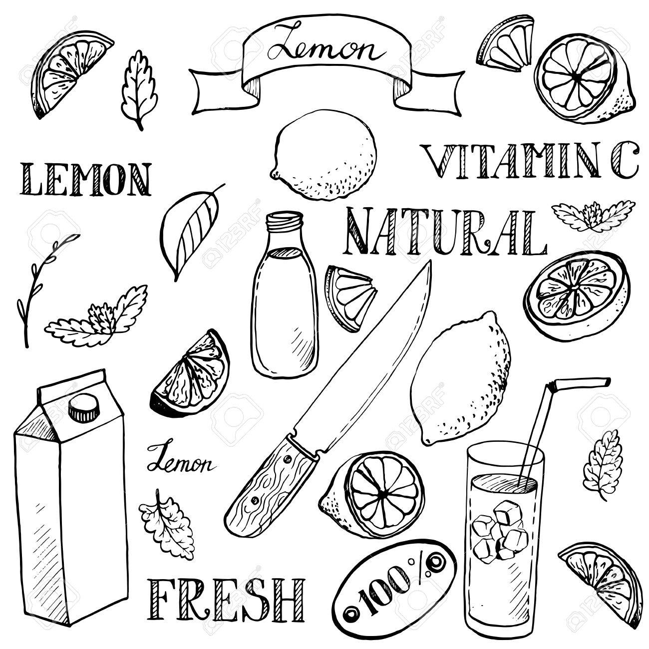 1300x1300 Lemon Sketch Set, Ink Drawing Vector Elements Royalty Free