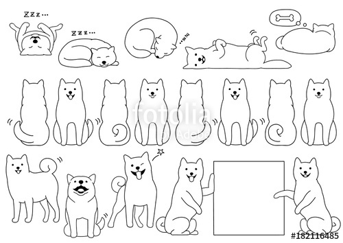 500x354 Shiba Inu Elements Line Drawing Stock Image And Royalty Free