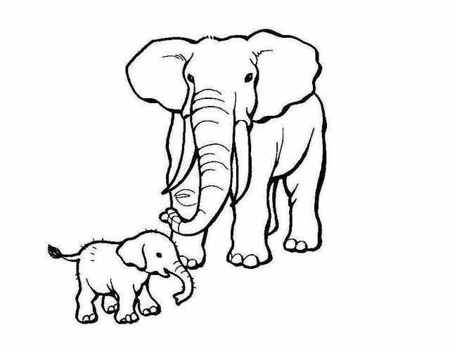 640x503 Colour Drawing Free Wallpaper Elephant Mom Baby Coloring Drawing