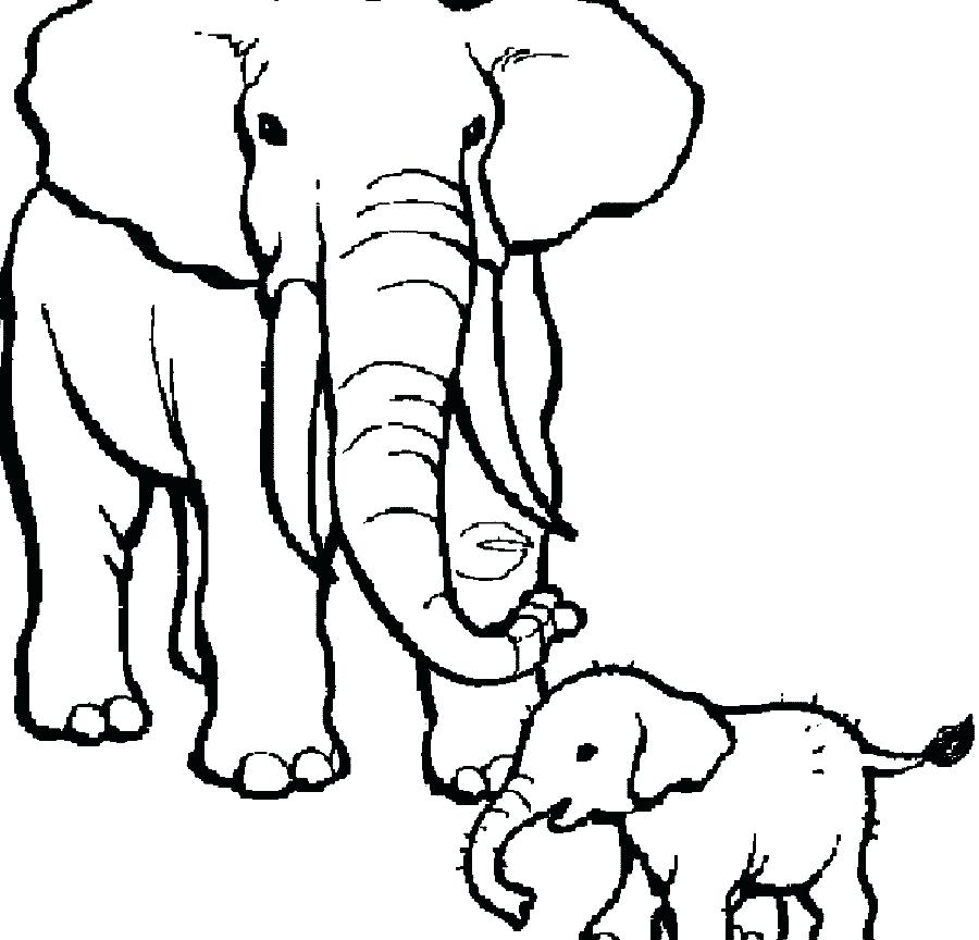 900x864 Elephant Coloring Book As Well As Baby Elephant Coloring Pages