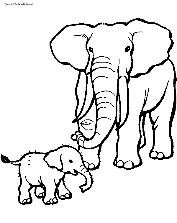 600x756 Baby Elephant Coloring Pages