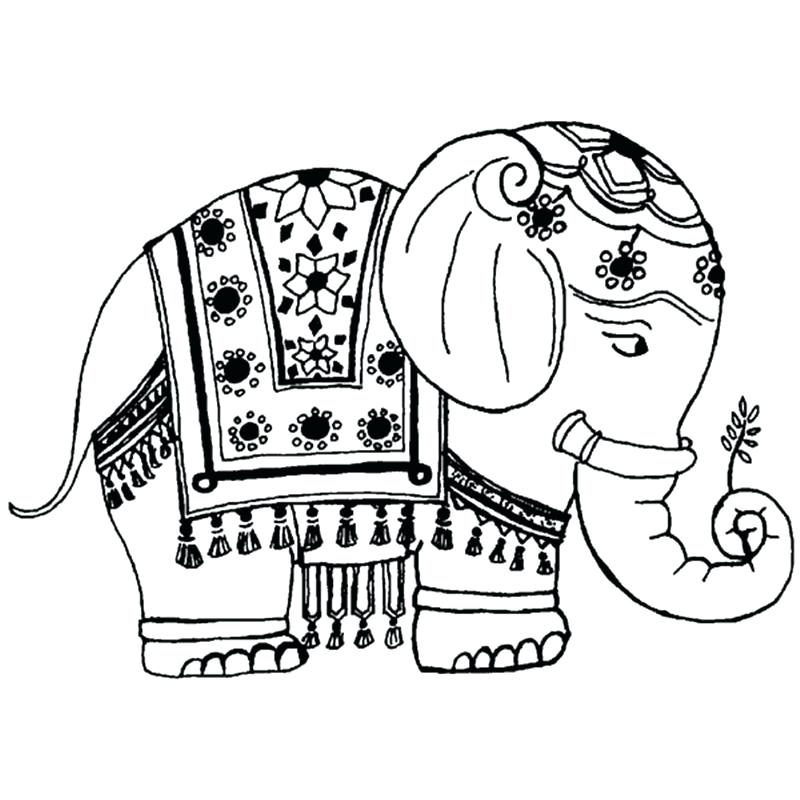 800x800 Coloring Pages Elephant Elephant Drawing Panda Free Images Animals