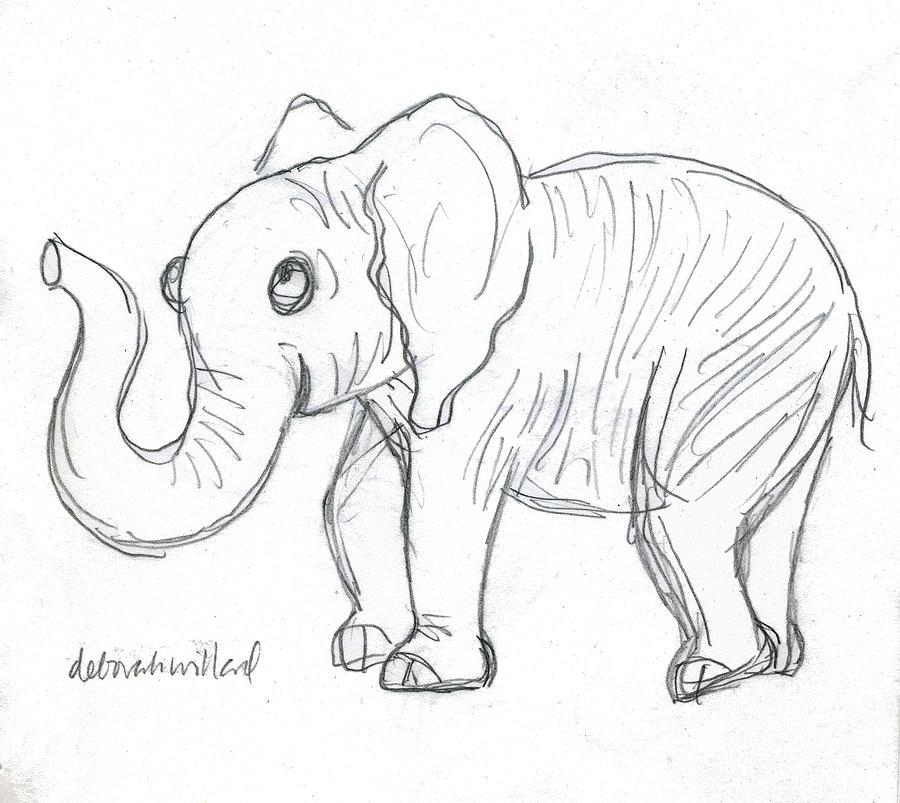 900x803 Cute Elephant Drawing By Deborah Willard