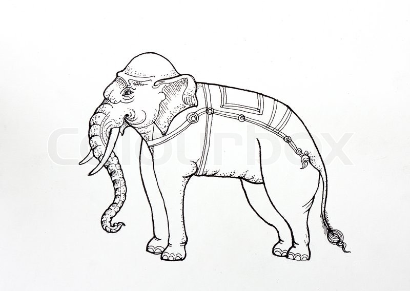 800x568 Drawing Thai Tradition Art,white Elephant, By Pen On Paper Stock