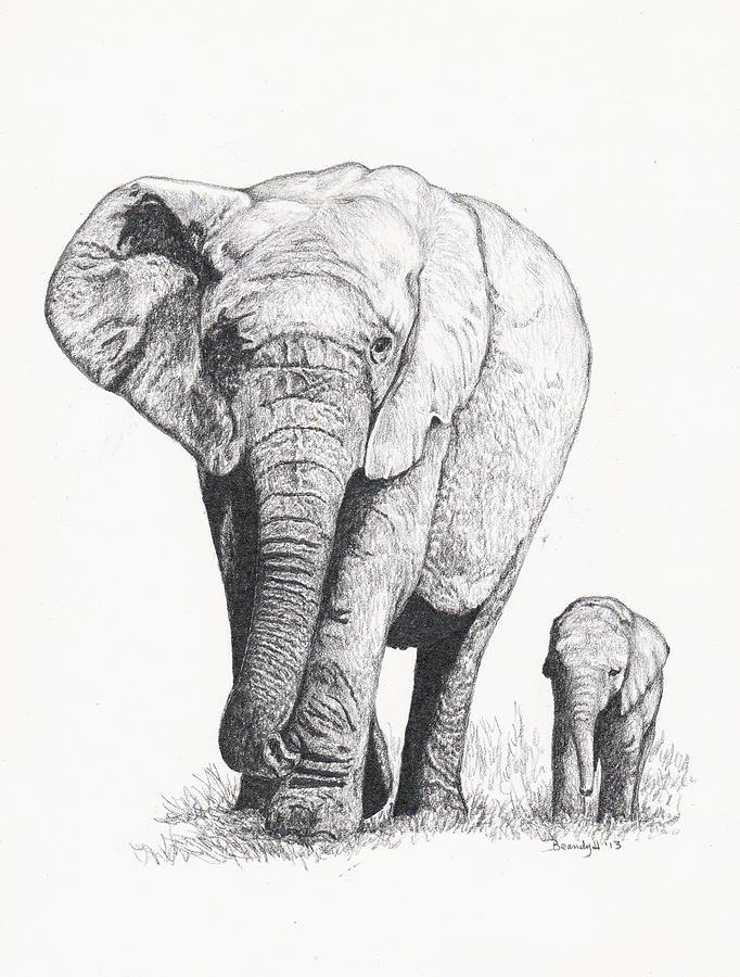 682x900 Elephant Walk Too Drawing By Brandy House