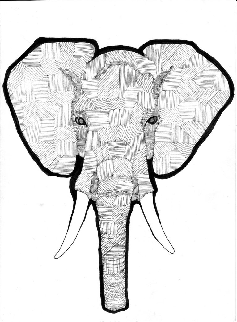 767x1042 Elephant Tee By Thomnommonster