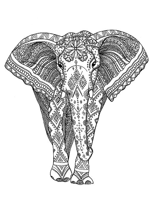 513x700 Love Elephant Drawing By Nicky Kumar