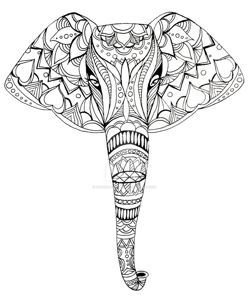 813x983 Patterned Elephant Ink Drawing By Amandaruthart