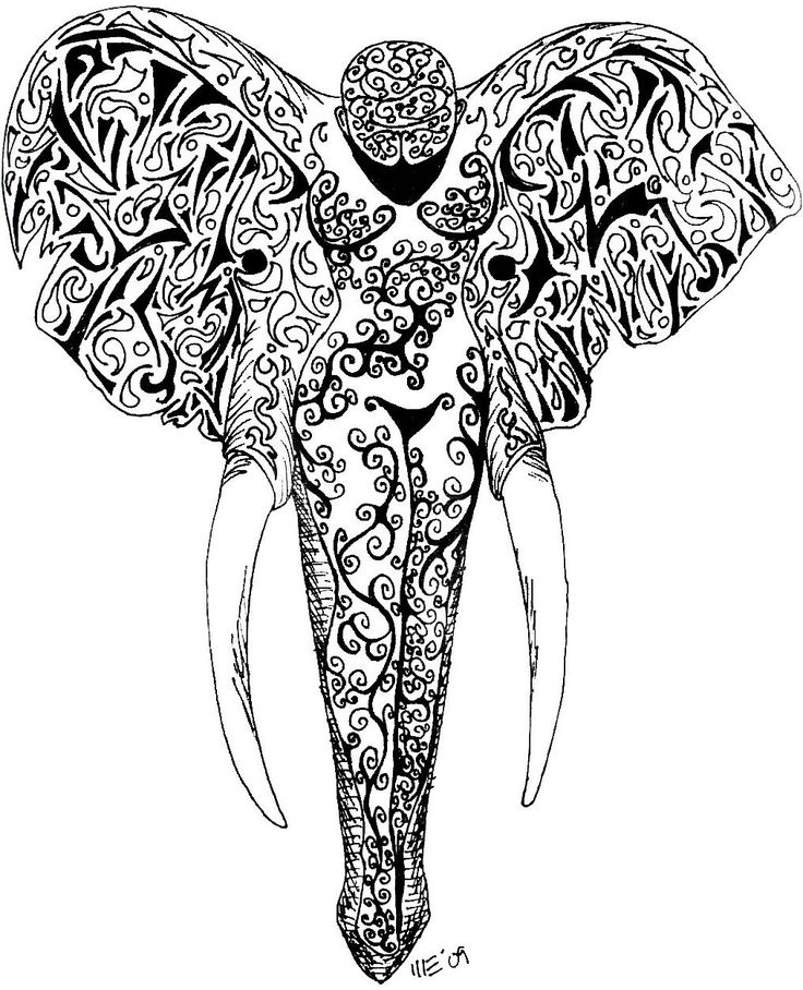 736x908 Collection Of Elephant Black White Line Art Tattoo Design