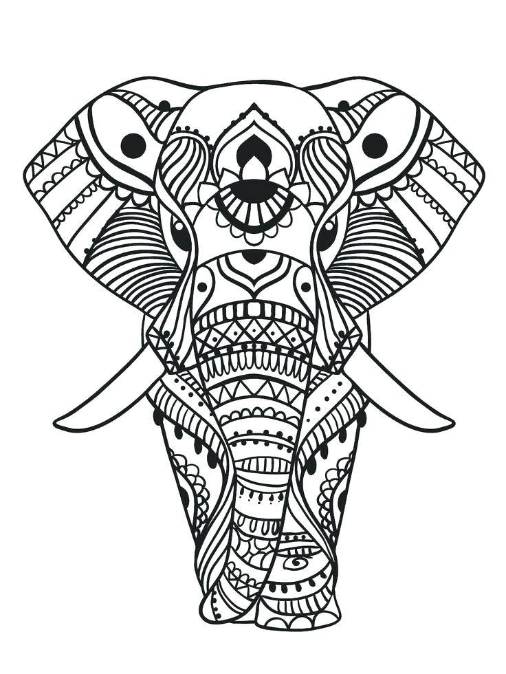 736x980 Elephants Pictures To Color Pin Drawn Elephant Color 3 Elephants