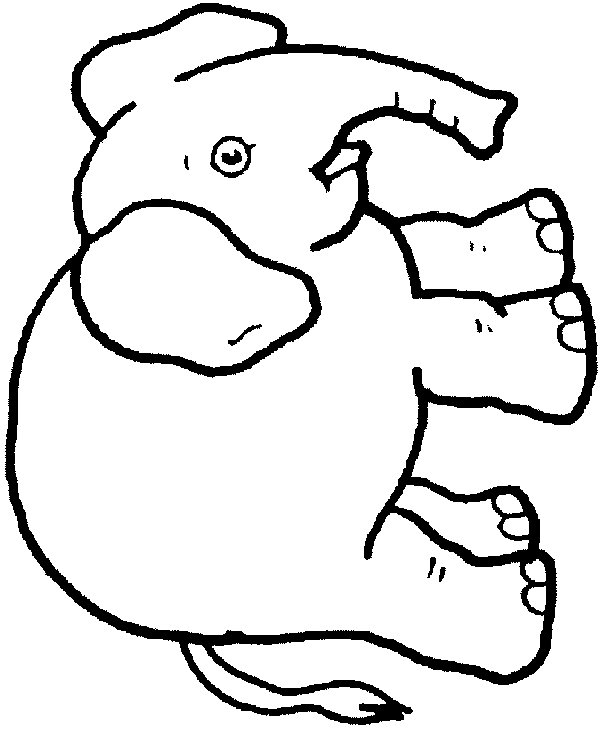 Elephant Baby Drawing At Getdrawings Com Free For Personal Use