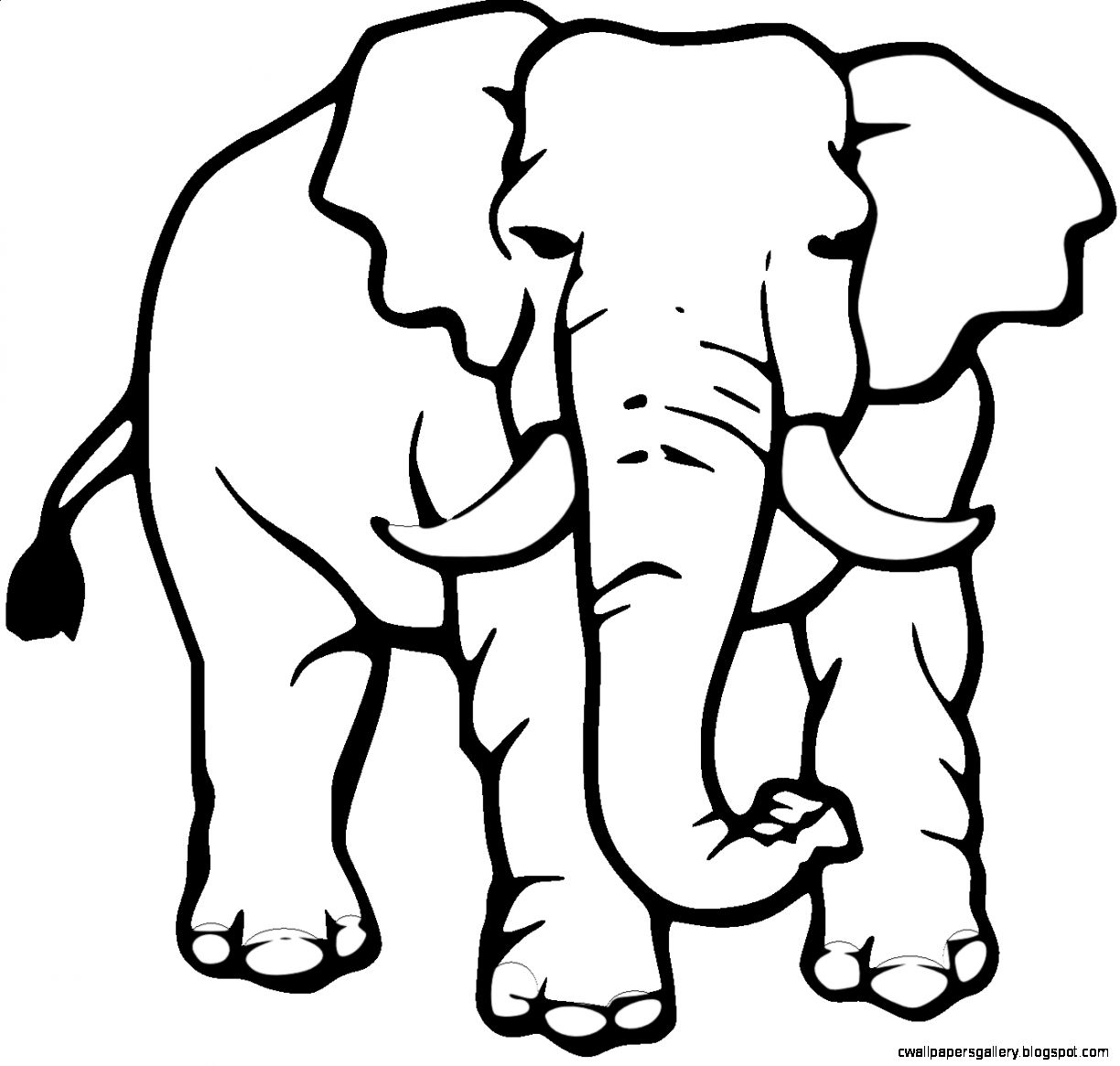 1224x1165 Elephant Black And White Drawing Wallpapers Gallery