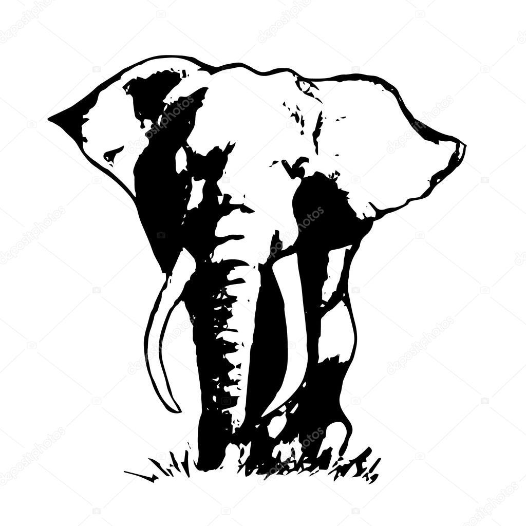 1024x1024 Elephant Abstraction Black 0 Stock Vector Mila Endo