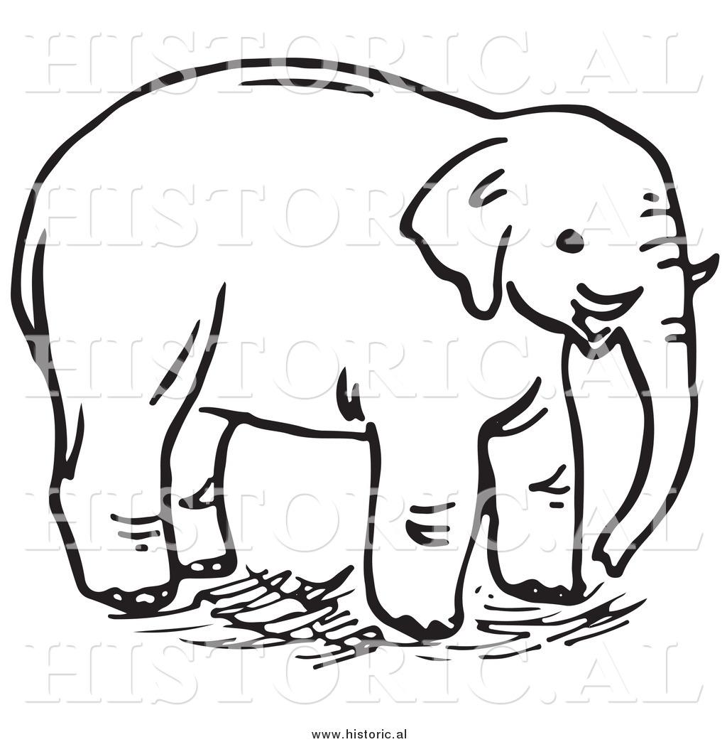 1024x1044 Wild Elephant Clipart, Explore Pictures