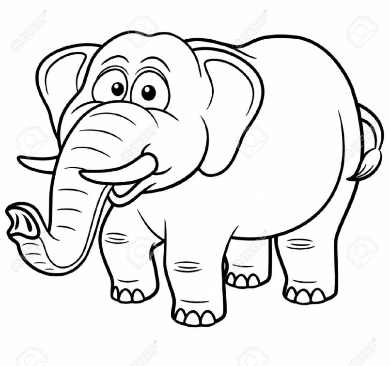 805x755 Coloring How To Draw Cartoonnimals Elephant With How To Draw