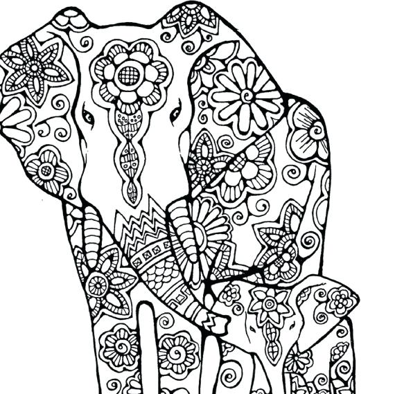 570x569 Elephant Coloring Book Together With Drawing Elephant For Coloring