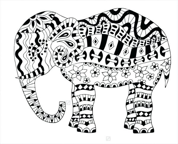600x485 Indian Elephant Coloring Pages Printable Page Best Elephants