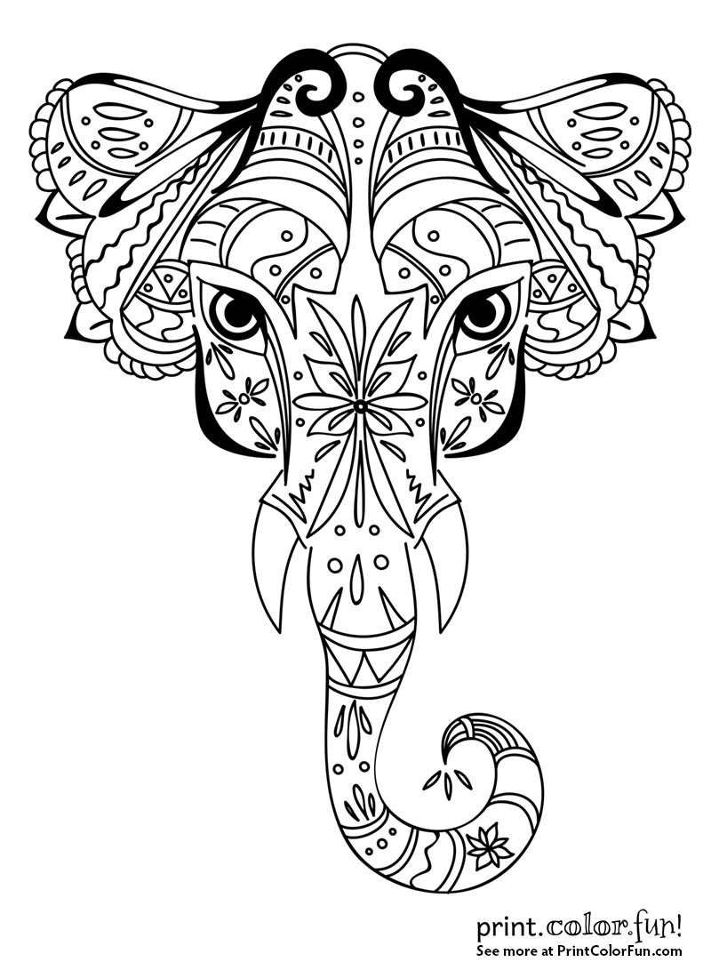 800x1100 Ornamental Elephant Design Coloring Page