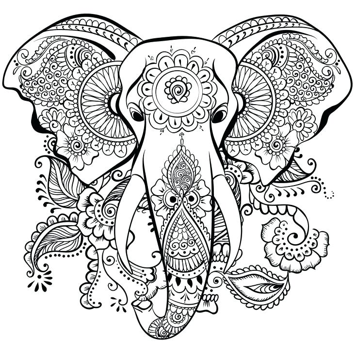 736x737 Coloring Pages Elephant Elephant Drawing Panda Free Images Animals