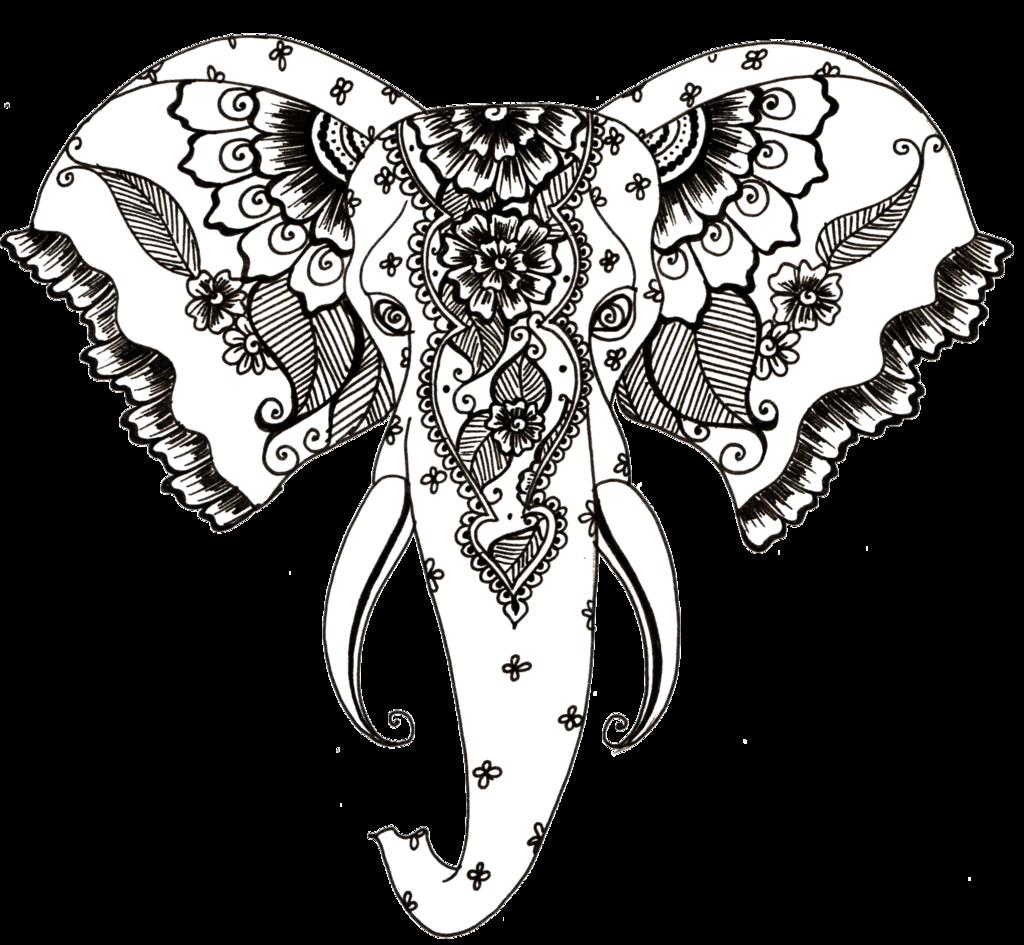 1024x945 Elephant