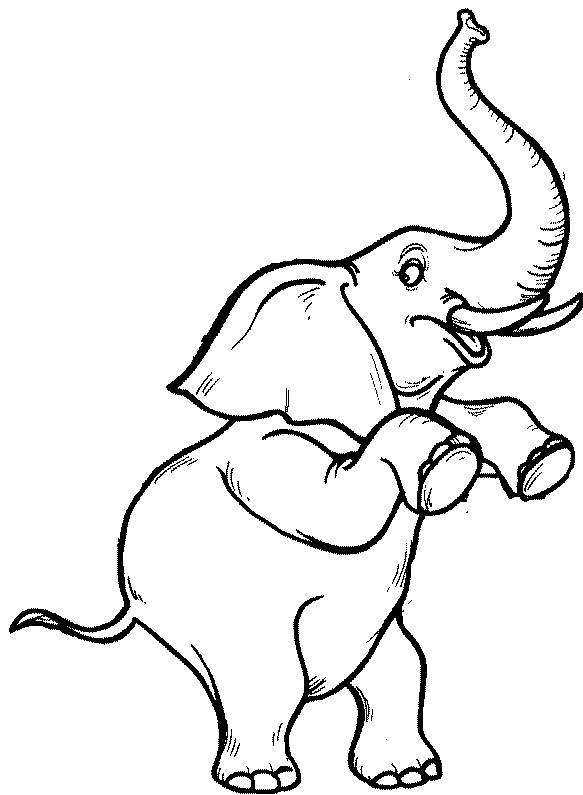 583x795 Don'T Think About Elephants (And Other Secrets For Getting Clients