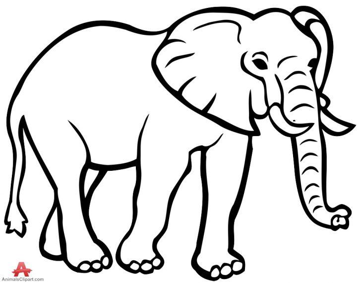728x570 Elephant Clipart Outline