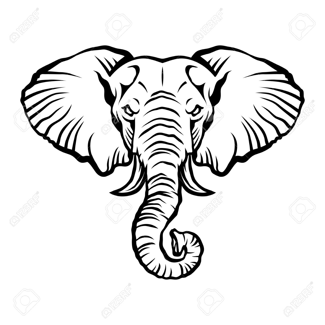 1300x1300 Elephant Head Stock Photos. Royalty Free Business Images