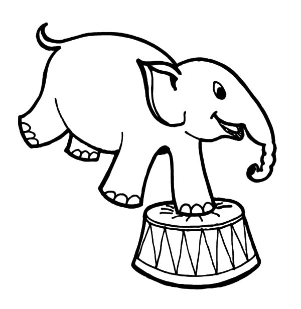 600x616 How To Draw Circus Elephant Coloring Pages Best Place To Color