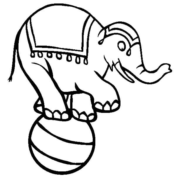 600x612 Circus Elephant Coloring Pages For Kids Best Place To Color