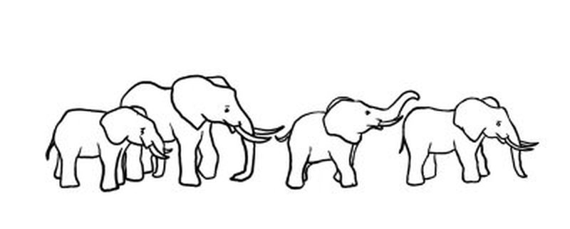 Elephant Drawing Outline