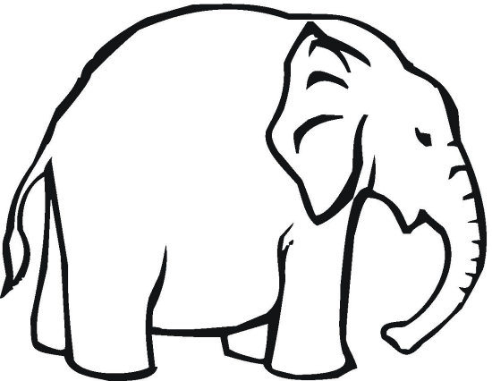 550x426 Elephant Coloring Page