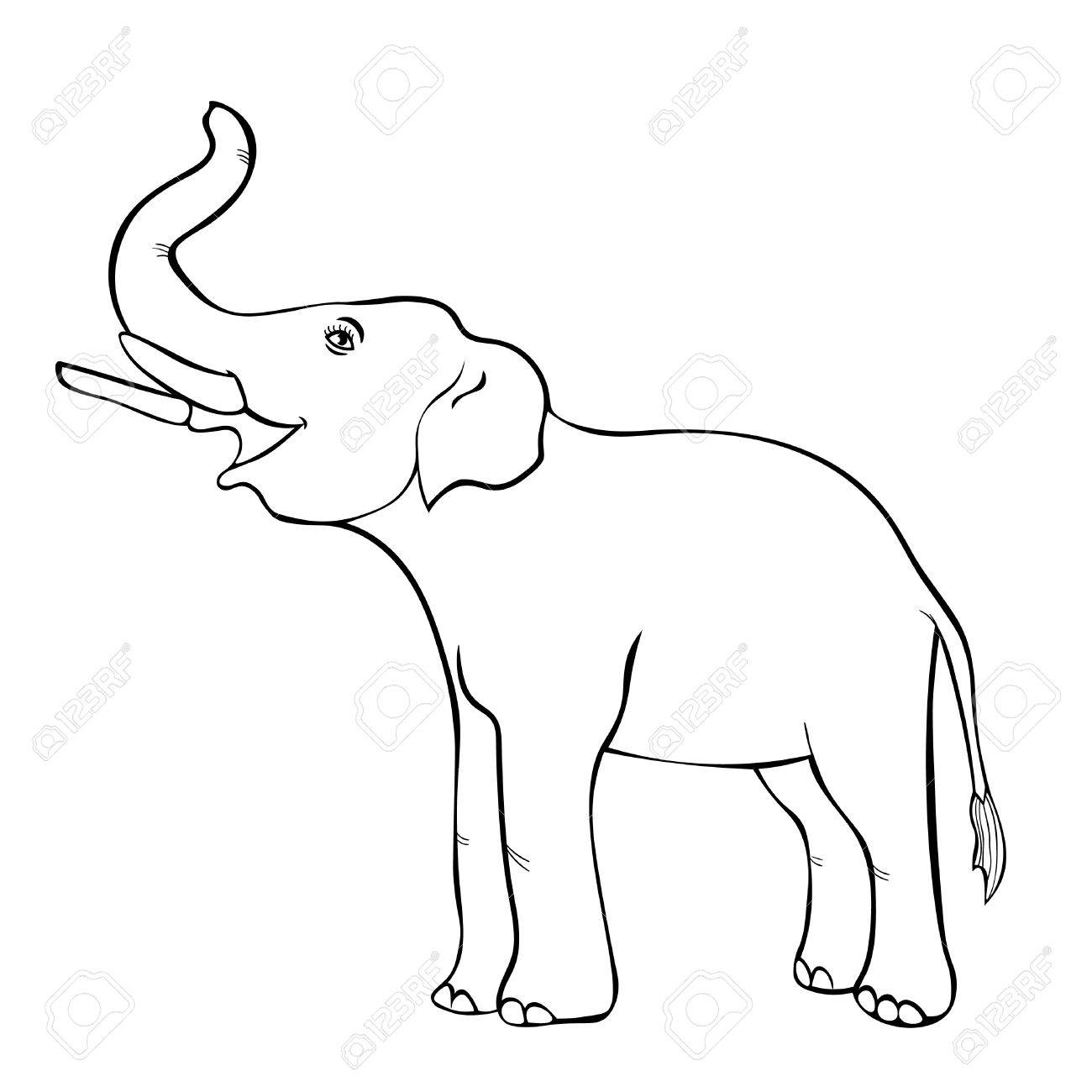 1300x1300 Smiling The Elephant Sideways Up The Trunk Coloring Vector