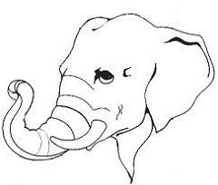 240x204 Elephant Trunk Shyam K