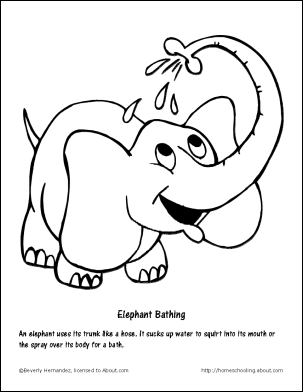 303x392 Asian Elephant Coloring Pages