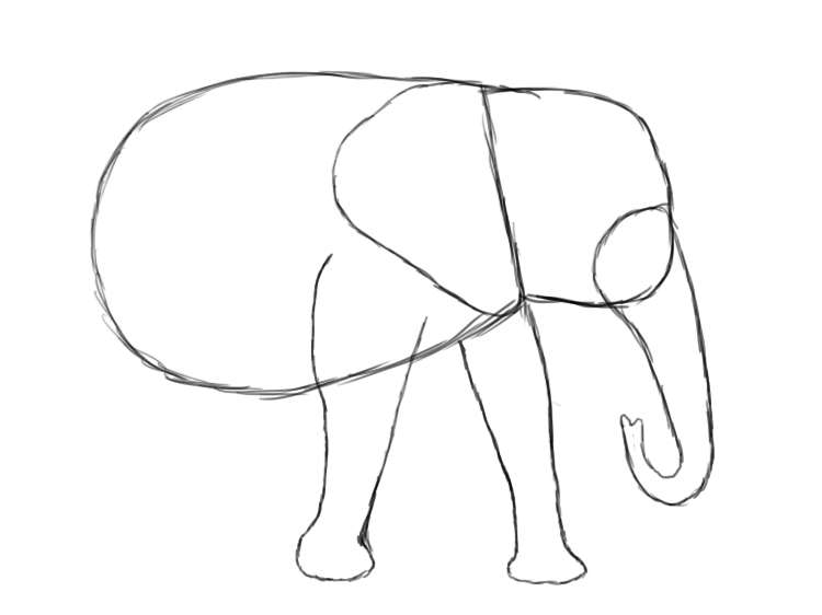 750x562 How To Draw An Elephant